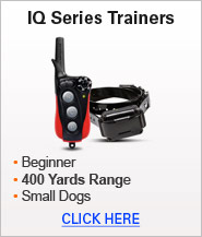 IQ Series Trainers