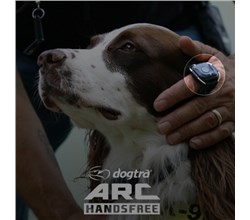 ARC Series Trainers dogtra arc handsfree