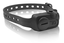 Best Sellers dogtra iq no bark collar black